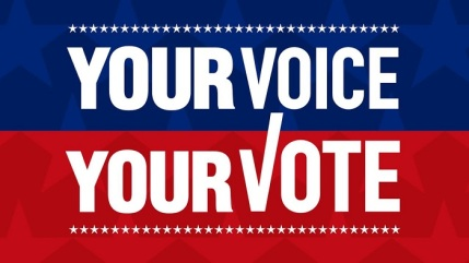 Image result for get out and vote